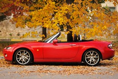 Mazda Mx5 (Tomasso81) Tags: light red tree car leaf nikon nikkor mazda tuning limited edition autunno rosso bergamo mx5 d90 edizione samyang limitata