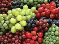 La Rioja: Preocupa la crisis que afecta al sector vitícola