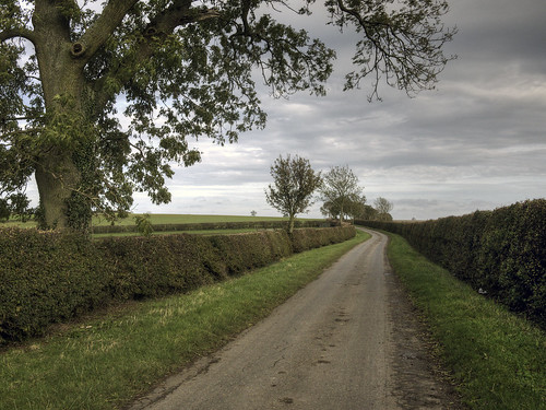 lincolnshire-wolds-lane