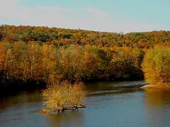 November on the River (Maureclaire) Tags: november autumn autumnfoliage trees water river ma ngc herbst herfst el foliage otoo  autunno haust outono timo hst confluence ctriver connecticutriver syksy autumncolor podzim scatto hsten westernma musim deerfieldriver sonbahar ruska jesen montaguema efterr sz lautomne  turnersfallsma  gugur jesieni   jeseni mygearandme   confluenceoftheconnecticutanddeerfieldrivers
