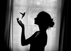 (rebeccamahoney) Tags: blackandwhite bird window girl silhouette self hummingbird edit omgomgomg imsoscaredandsoexcitedandjustkdjfhaiufkhsd ifeellikeanormalamericanteenagero omgomgomgguys onfridaywhichwillbe111111 imgoingonmyfirstactualdateever