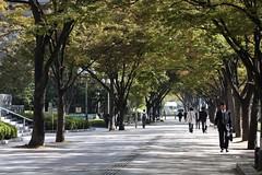 プロムナード / Promenade