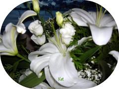 Flores primer aniversario Kai