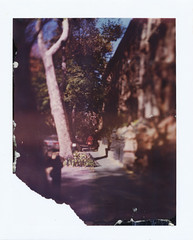 (jeffreywithtwof's) Tags: street city 2002 autumn fall film jeff brooklyn analog polaroid type instant hutton expired fortgreene brownstones 79 graflex speedgraphic jeffhutton jeffhuttonphotography jeffreyhutton