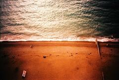 Small Fish & Chips (fotobes) Tags: sea film beach sign 35mm lomo lca lomography marine aqua brighton pebbles analogue brightonbeach highup fishandchips viewfromthewheel fotobes brightonwheel seagullsview