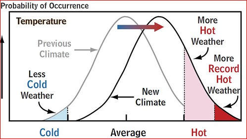 Machiavelli and Fortuna's whim | Climate Etc