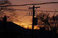 Power (Donleen) Tags: city sunset sky urban orange wires poles project365 60d