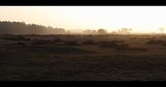 sunset over De Plijmen (erikoo) Tags: park light sunset sun nature dutch grass canon landscape eos nationalpark rust herfst nederland national 7d lucht schaduw hoge veluwe landschap dutchlandscape gelderland hogeveluwe overbelicht schaduwen 35mmf2 parkhogeveluwe parkdehogeveluwe