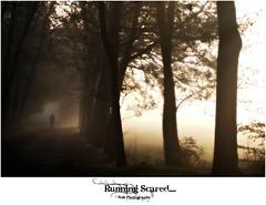 Running Scared.... (Zino2009 (bob van den berg)) Tags: autumn trees woman mist holland fall nature girl fog dark healthy path herbst herfst foggy silhouettes running sunrays sundaymorning deventer mistig joggen nederlad zino2009 bobphotography