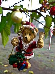 (Lady Pandacat) Tags: christmas 2011 pandacat canong9 pandacatbaby tinaangel iknowitsearlybutchristmasismyfavoritetimeofyearsomyfamilyalwaysstartsbeforemostpeople