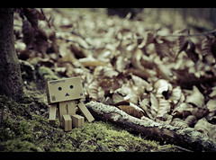 ( Hector Alonso) Tags: canon toy eos tamron danbo boxman 1750mm revoltech 60d danboard danboo
