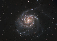 M101 The Pinwheel Galaxy in RGB (Terry Hancock www.downunderobservatory.com) Tags: camera sky color monochrome wheel night stars photography mono major pier backyard fotografie photos space ngc she