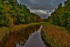 Stormy Fall Day (chumlee10) Tags: trees reflection fall water colors wisconsin clouds outdoors stream niceshot sony mercer wi a300