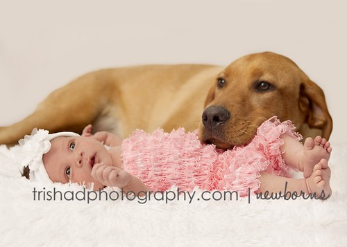 lilly pup and baby