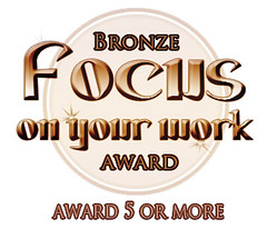 Focus bronze award