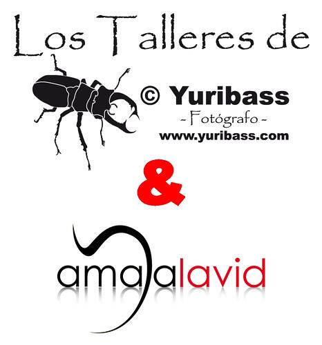 """I Sesión Fotográfica """"Los Talleres de © Yuribass & Amaya Lavid"""""""