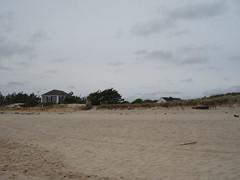 Georgica Beach (thebestbeach) Tags: easthamptonny longislandbeaches georgicabeach