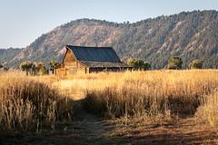 The Barn (Amy Galbraith Photography) Tags: fall unitedstates fallcolors wyoming jacksonhole grandtetonnationalpark gtnp canon1dmarkiin schwabacherslanding amygalbraithphotography