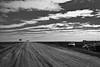 Mt Eba road, South Australia, B&W version (Outdoorsman, environmentalist, Wellingtonian) Tags: southaustralia mteba yahoo:yourpictures=landscape