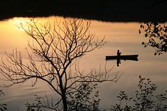 Evening Paddle (peterkelly) Tags: sunset sun ontario canada reflection tree water digital boat huntsville shoreline canoe shore northamerica paddler arrowheadlake arrowheadprovincialpark caoeing