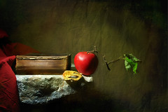 Still-Life (Arunas S) Tags: autumn stilllife texture apple book stillleben background stilleven stilleben baltic retro explore marble scripture lithuania naturemorte  naturamorta naturalezamuerta lietuva palanga  stonetable naturezamorta  martwanatura asetelma natiurmortas natrmort klusdaba magicunicornverybest etamvitae