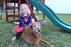 IMG_9090 (drjeeeol) Tags: dog pet halloween goldenretriever costume backyard katie tiger superman superhero cape supergirl fav triplets toddlers 2011 36monthsold
