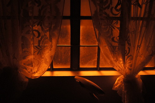 Nighttime Window