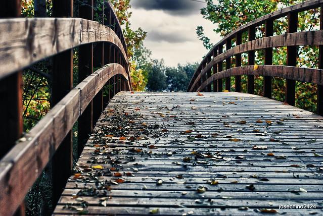 Cruzando el puente en otoño
