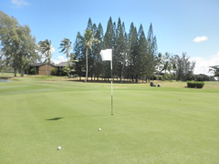 Turtle Bay Colf Course 145