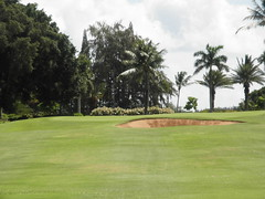 Turtle Bay Colf Course 151