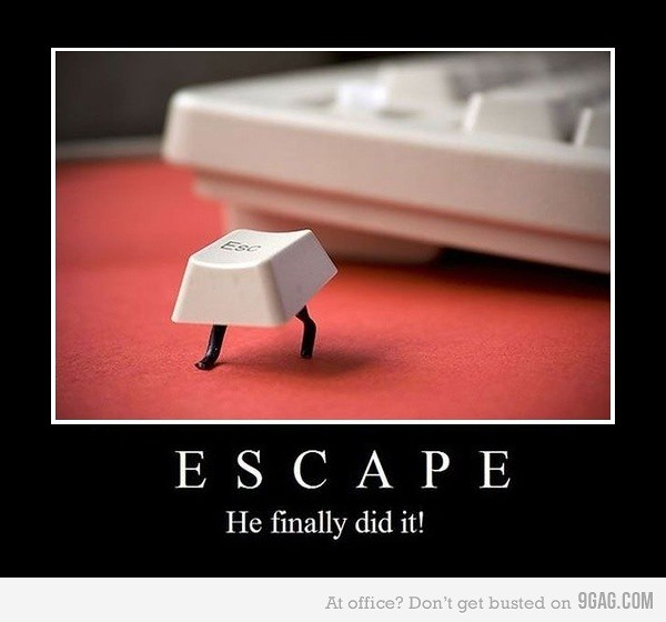 Escape manage to get away
