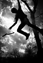 everyone is a genius. but if you judge a fish on its ability to climb a tree, it will live its whole life believing that it is stupid. (CHRISTOPHER ERDOS) Tags: bw tree broken silhouette clouds dead branches einstein falling rotten flour canoneosrebelt3