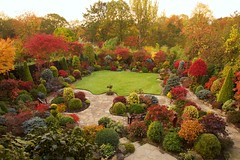 Late Autumn October Dawn (Four Seasons Garden) Tags: autumn colour fall garden four seasons foliage tapestry walsall fourseasonsgarden
