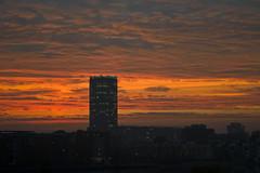 Sonnenuntergang (mompl) Tags: leica berlin treptow rummelsburg stralau berlinberlin m9p