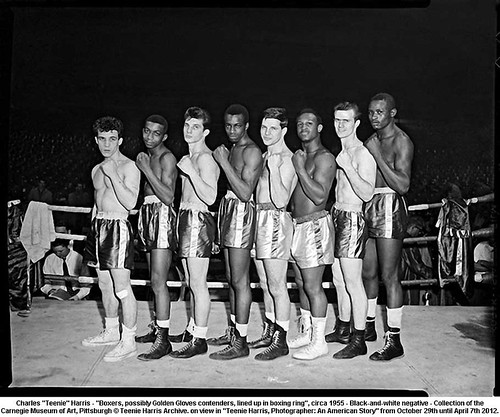 "Charles ""Teenie"" Harris - ""Boxers, possibly Golden Gloves contenders, lined up in boxing ring"", circa 1955 by artimageslibrary"