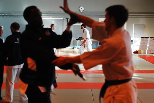 6299406145 fcc143e93a London & Hove Shodokan Aikido Festival 2011