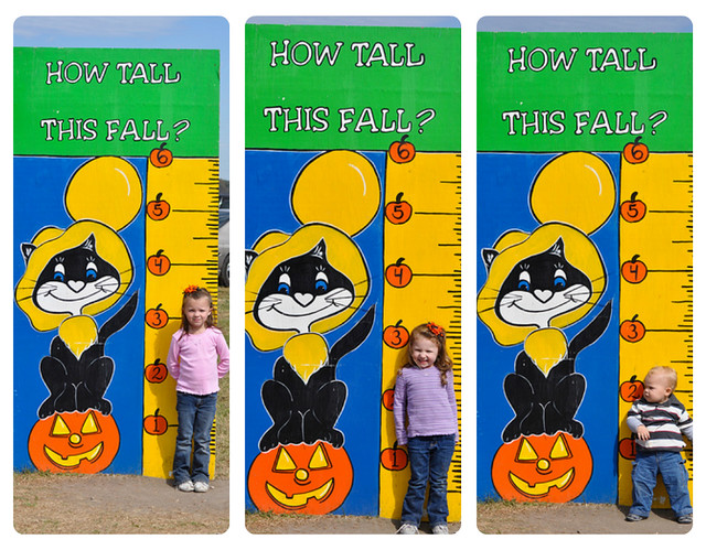 The Littles | How Tall This Fall
