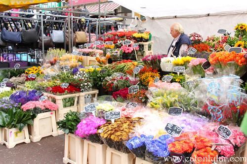Flowers, Albert Cuyp Street Market