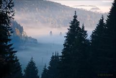 Nebel liegt in den Tlern (H.B.Koch) Tags: autumn trees sun mist fog forest germany deutschland nebel urlaub herbst valley sonne wald bume schwarzwald blackforest tal feldberg titisee brental hbkoch