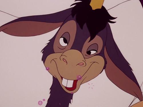 Pastoral oral13e donkey urp