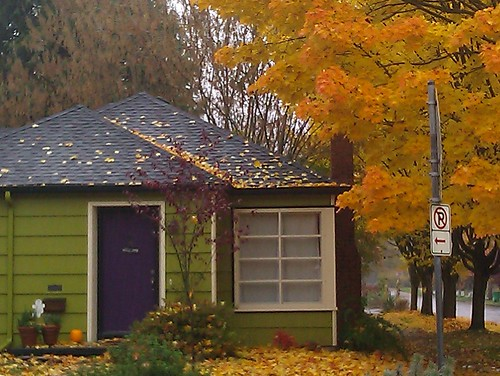A small, bright green and purple house with a blazing golden autumn tree next to it, Portland Oregon
