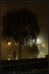 Trent Glow (MrkJohn) Tags: nottingham bridge november winter light mist cold tree grass fog night river glow bright foggy meadows victoria beam trent lamps leafs embankment 20th 5am 2011 ng2 westbridgeford mjmerry