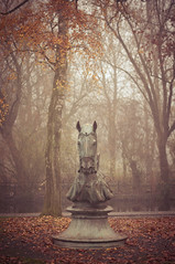 Your move (MMortAH) Tags: york autumn trees horse mist fall fog 50mm nikon yorkshire 14 north chess nikkor piece afs rowntreepark d90