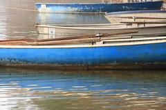 blue boats (im_fluss) Tags: blue lake reflection boats see oberbayern boote rowing blau spiegelung boatrental rudern bootsverleih hartsee eggsttt