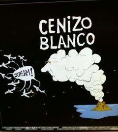 Cenizo Blanco
