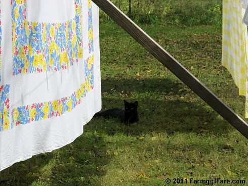 Vintage spring linens on the autumn laundry line 3 - FarmgirlFare.com