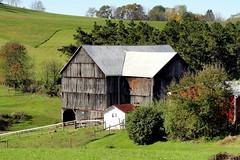 Ohio | Weems (e r j k . a m e r j k a) Tags: ohio barn rural countryside farm meadow explore jefferson roadside smithfield bucolic farmstead weems newalexandria erjkprunczyk oh151