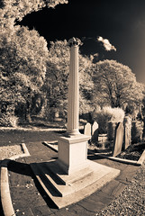 Brockley and Ladywell cemetery, London. (blackwoodse6) Tags: uk trees england cemeteries london cemetery grave ir nikon lewisham graves infrared southlondon ladywell brockley splittone southeastlondon infraredphotography londoncemeteries splittoning se4 londonboroughoflewisham boroughoflewisham brockleyandladywellcemetery