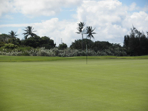 Turtle Bay Colf Course 273