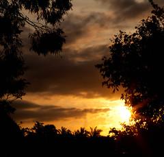 20111028 Sunset Friday
